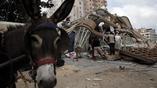 Des Palestiniens au milieu des décombres de leurs habitations le 24 août 2014 à Gaza  [Thomas Coex / AFP]
