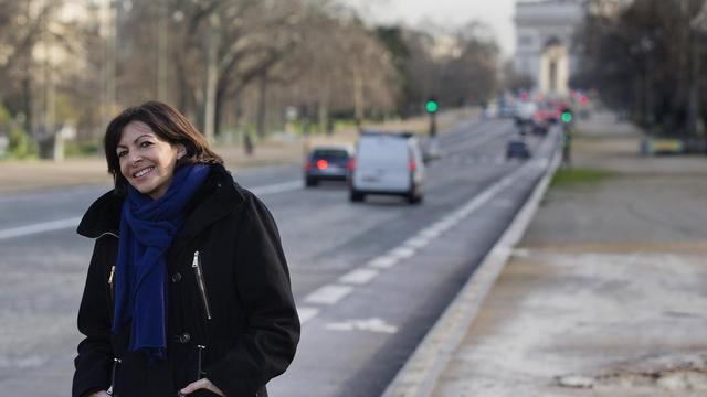 La candidate PS à la mairie de Paris, Anne Hidalgo, le 23 janvier 2014 à Paris [Joël Saget / AFP]