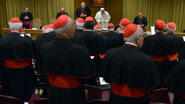 Le pape François s'adresse aux cardinaux du monde entier réunis au Vatican, le 20 février 2014 à Rome [Gabriel Bouys / AFP]