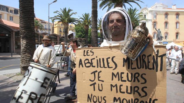 Manifestation d'apiculteurs à Perpignan le 7 juin 2014 [Raymond Roig / AFP/Archives]