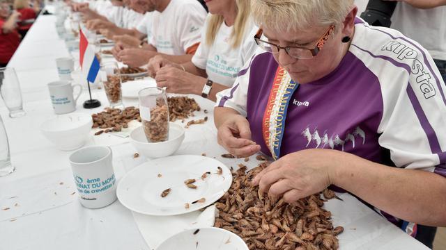 La gagnante de la compétition de décorticage de crevettes à Leffrinckoucke dans le Nord, Nicole Vanzinghel (droite) le 3 août 2014 [Philippe Huguen / AFP]