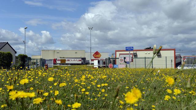 Un champ devant l'entrée des abattoirs Gad à Josselin dans le Morbihan, le 11 août 2014   [Miguel Medina / AFP]