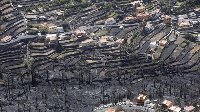 L'incendie qui a détruit plus de 4.000 hectares de végétation sur la petite île de La Gomera, aux Canaries, a perdu en intensité mardi, permettant le retour de la plus grande partie des habitants évacués mais laissant derrière lui des paysages calcinés.[AFP]