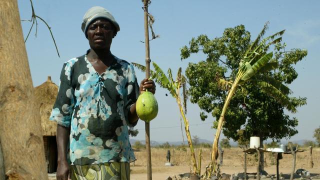 Connie Garandemo devant sa maison avec une papaye, le 6 août 2012 dans la région de Buhera, dans le sud-est du Zimbabwe [Jekesai Njikizana / AFP]