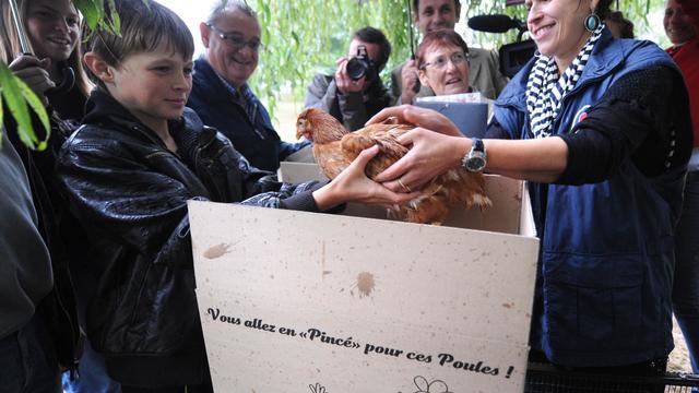 La vétérinaire Martine Cottin (d) donne une poule à Mathieu, un jeune habitant de Pincé, le 21 septembre 2012 [Jean-Francois Monier / AFP]