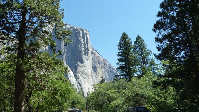 Une troisième personne, de nationalité américaine, est décédée après avoir contracté le syndrome pulmonaire à hantavirus (SPH) lors d'un séjour au Parc naturel de Yosemite (Californie, ouest), ont annoncé jeudi les autorités du parc. [AFP]