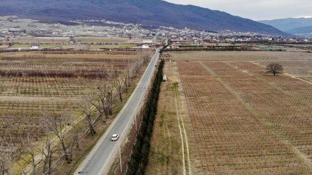 Vue d'une vigne à Saguramo, à environ 40 km à l'ouest de Tbilissi en Géorgie, le 11 mars 2019 [Vano SHLAMOV / AFP]