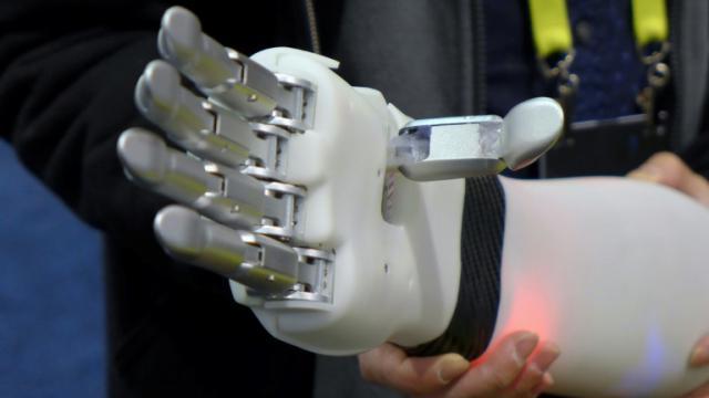 Prothèse de main capable d'interpréter les signaux envoyés par les muscles résiduels de l'utilisateur présentée par la start-up BrainRobotics au salon d'électronique CES de Las Vegas, le 7  janvier 2017    [Sophie ESTIENNE / AFP]