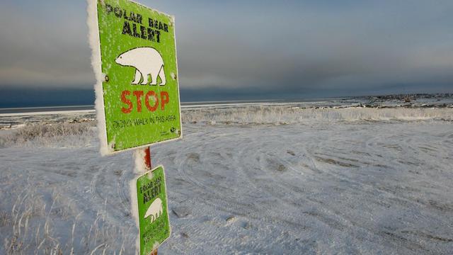 Il s'agit là d'un «record absolu» de chaleur pour Alert, au Canada, une station située sur le rivage de l'océan Arctique.