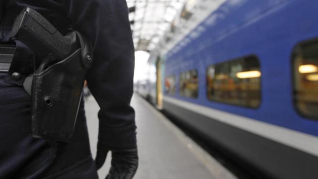 Plusieurs attentats ont été déjoués en France au cours des derniers mois.