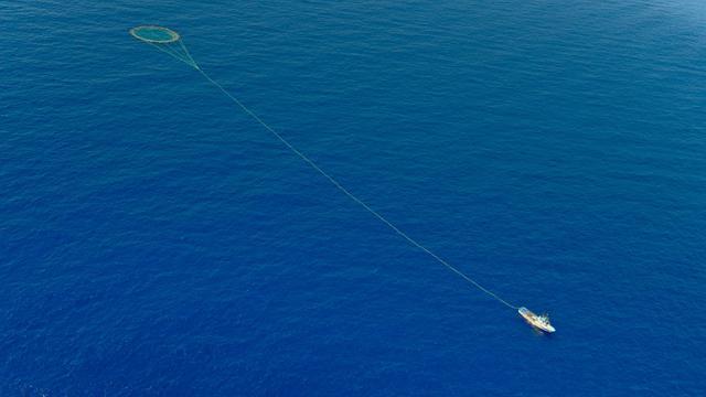 Un thonier traîne un filet derrière lui, au sud de Malte, le 26 mai 2010 [Andreas Solaro / AFP/Archives]