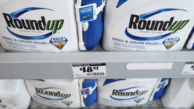 L'herbicide contesté glyphosate devrait être supprimé en France d'ici trois ans dans 80 à 90% de ses utilisations [Robyn Beck / AFP/Archives]