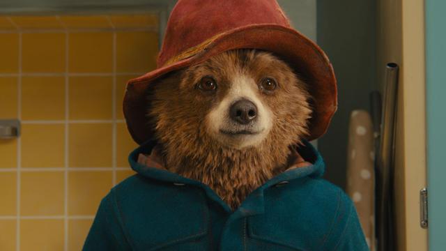 """L'ours Paddington crève l'écran dans le film de Paul King """"Paddington""""."""