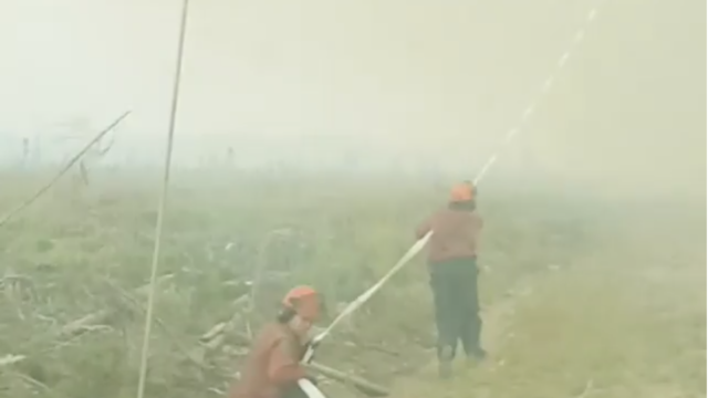 Les pompiers n'ont rien pu faire face à cette tornade de feu