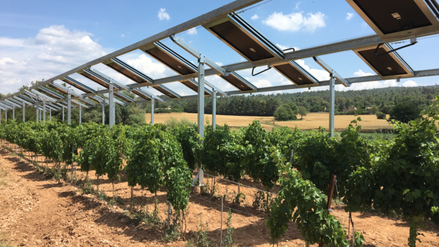 Un prototype a été installé à titre expérimental au-dessus des vignes de Rians.