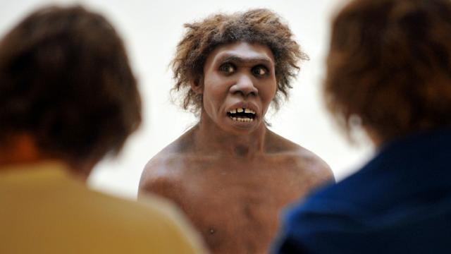 Photo prise le 2 juillet 2008 à Eyzies-de-Tayac, en Dordogne, d'un mannequin représentant un homme de Néandertal [PIERRE ANDRIEU / AFP/Archives]