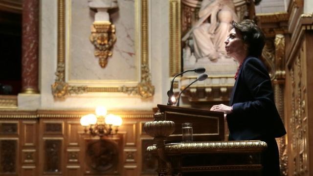 La ministre de la Santé Marisol Touraine le 28 octobre 2013 au Sénat [Jacques Demarthon / AFP/Archives]
