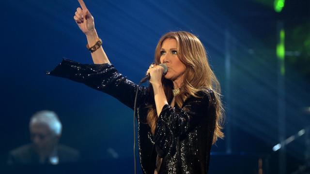 La chanteuse Céline Dion le 25 novembre 2013 au Palais omnisports de Bercy à Paris [Pierre Andrieu / AFP/Archives]
