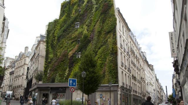A l'issue de plusieurs semaines de vote, 196 projets lauréats ont été retenus par les Parisiens.