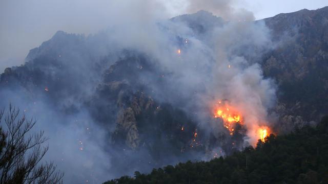 Une série d'incendies, attisés par des vents violents allant jusqu'à 90km/h sur l'île de Beauté, a dévasté 1.500 hectares de végétation en 24 heures.