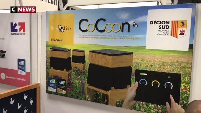 CES 2019: Une ruche connectée qui protège les abeilles