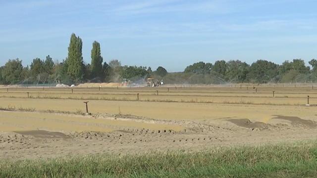 Pays de la Loire : inquiétude après une intoxication à un puissant pesticide