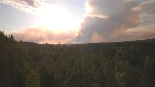 Suède : 25 000 hectares de forêts partis en fumée