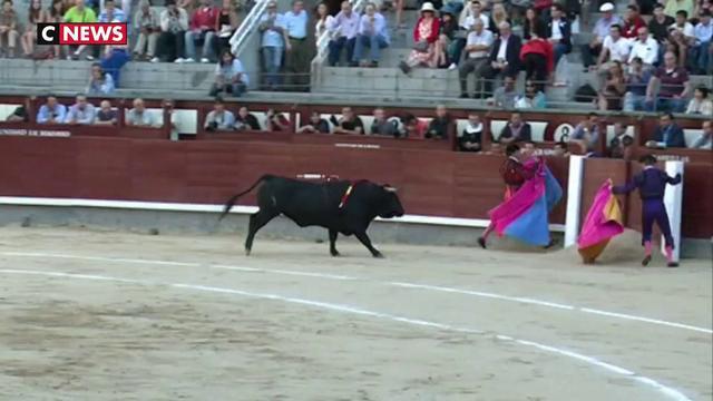 Faut-il supprimer la corrida ?