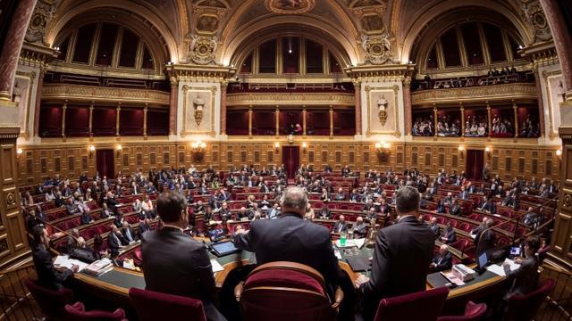 Une session du Sénat au Palais du Luxembourg à Paris le 17 novembre 2016 à Paris. [LIONEL BONAVENTURE / AFP/Archives]