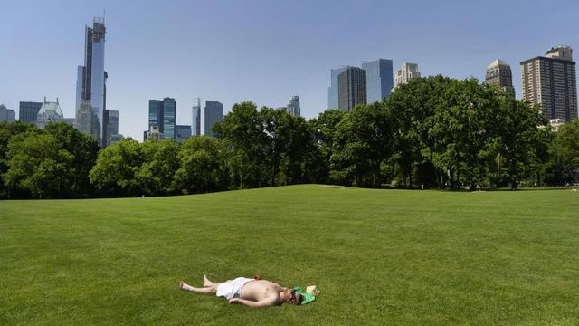 Une vue de Central Park, le 30 mai 2013 à New York [Timothy A. Clary / AFP/Archives]
