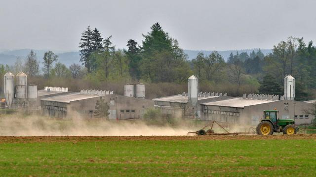 Un tracteur passe devant une porcherie industrielle construite sur le site de l'ancien camp de concentration de Lety en République tchèque, le 4 mai 2005 [Michal Cizek / AFP]