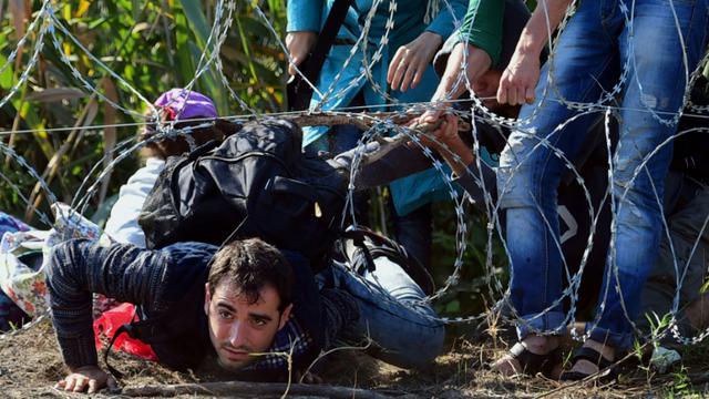 Des migrants passent sous la barrière de barbelés le 28 août 2015 près de  Roszke à la frontière entre la Hongrie et la Serbie [ATTILA KISBENEDEK / AFP]