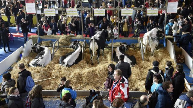Près de 700.000 visiteurs sont attendus dans les allées de la Porte de Versailles, où 4.000 animaux seront présentés.