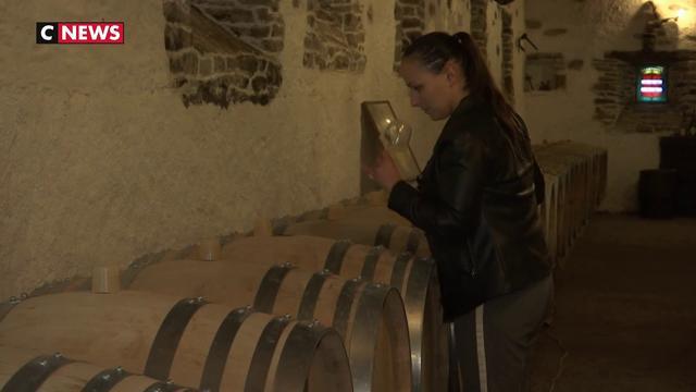 Les Etats-Unis taxent le vin français
