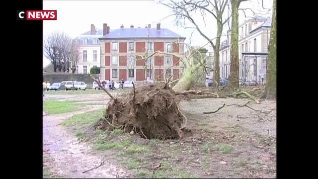 Prévisions météo : ce qui a changé depuis la tempête Lothar