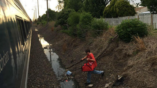 La scène insolite a été filmée par un passager du train et publiée sur les réseaux sociaux.