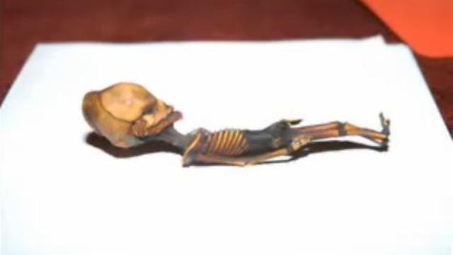 """""""Six-pouces"""", le mini-alien, était en fait un humain"""