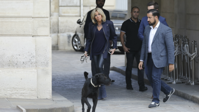 """Résultat de recherche d'images pour """"chien de Macron"""""""