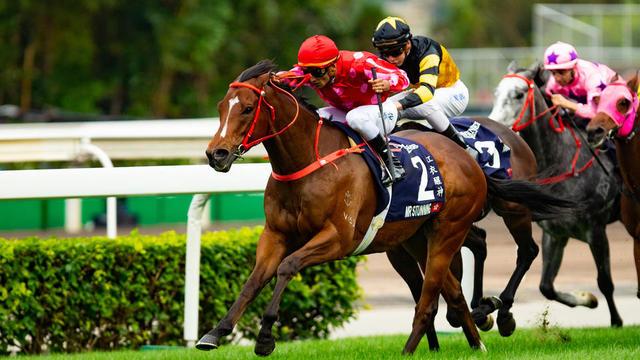 Comment choisit-on le nom des chevaux de course ? | CNEWS