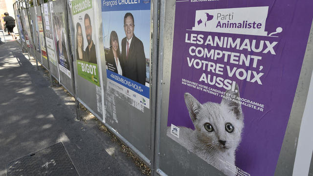 Déjà présent aux législatives de 2017, c'est la première fois que le Parti animaliste présentera une liste aux européennes.