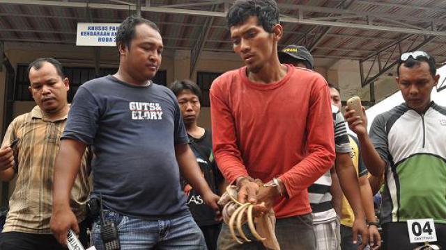 Resi Rokhis Suhana, un Indonésien de 27 ans accusé d'avoir pillé des tombes pour faire de la magie noire, lors de son arrestation par la police de Cilacap (Indonésie) le 15 décembre 2013.