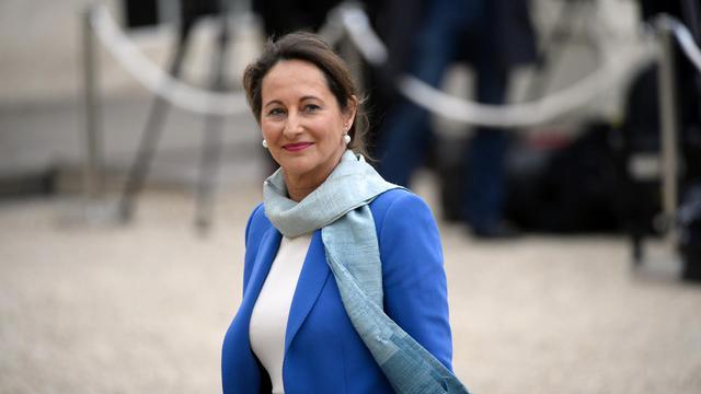 La ministre de l'Ecologie Ségolène Royal le 4 avril 2014 à l'Elysée, à Paris