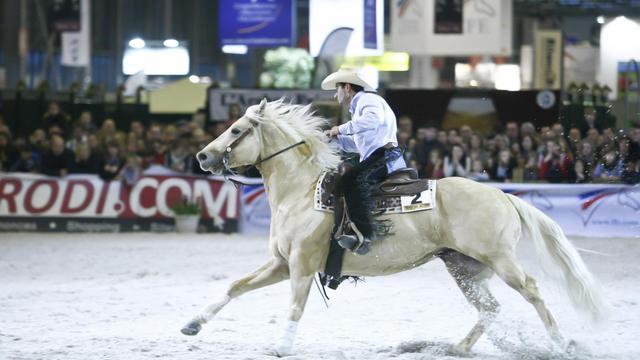 Un cavalier et sa monture lors d'une épreuve d'équitation western.