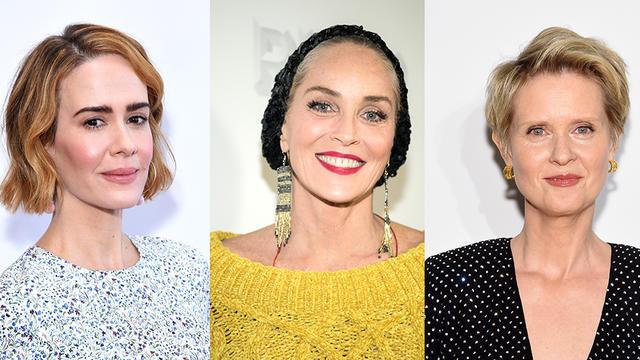 Sharon Stone et Cynthia Nixon font partie des dix stars à rejoindre Sarah Paulson au générique de la série destinée à Netflix.