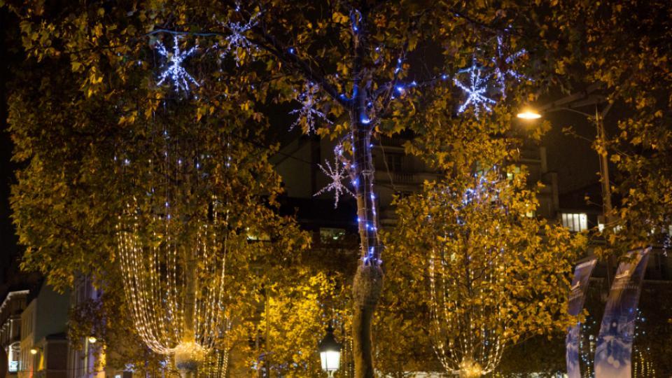 Les lumières resteront en place jusqu'au 7 janvier et seront réutilisées pour encore trois ou quatre Noël.
