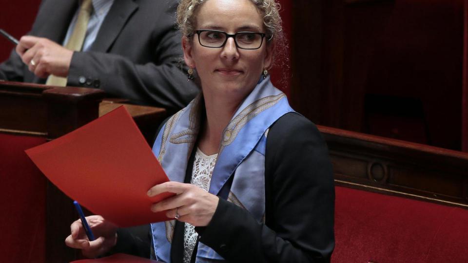 Delphine Batho n'a pas remis sa démission, c'est le président lui-même qui lui a retiré ses fonctions le 2 juillet 2013. L'ancienne ministre de l'Écologie avait critiqué les choix budgétaires du gouvernement lors d'une interview. Pour la remplacer, on nomme Philippe Martin.